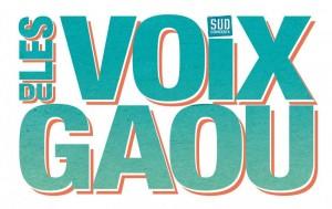 les-voix-du-gaou